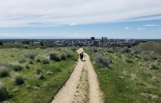 benefits of hiking Boise foothills